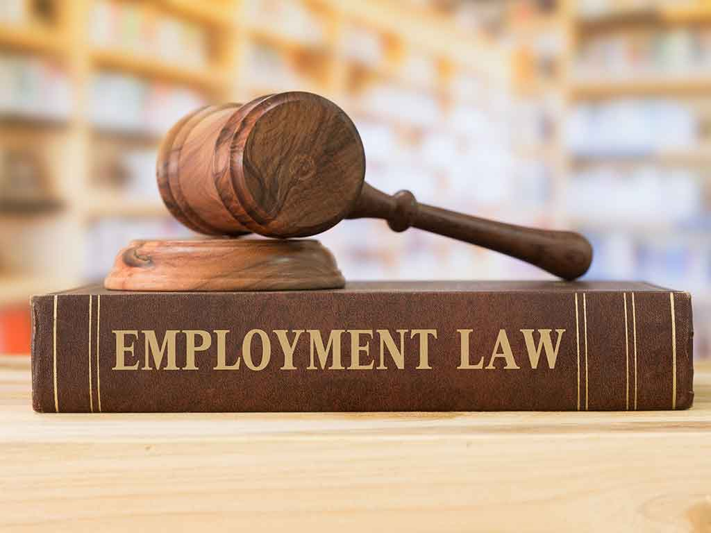 Employment Law is very important to consider for your business and employees, contact Payroll Solutions for more info.